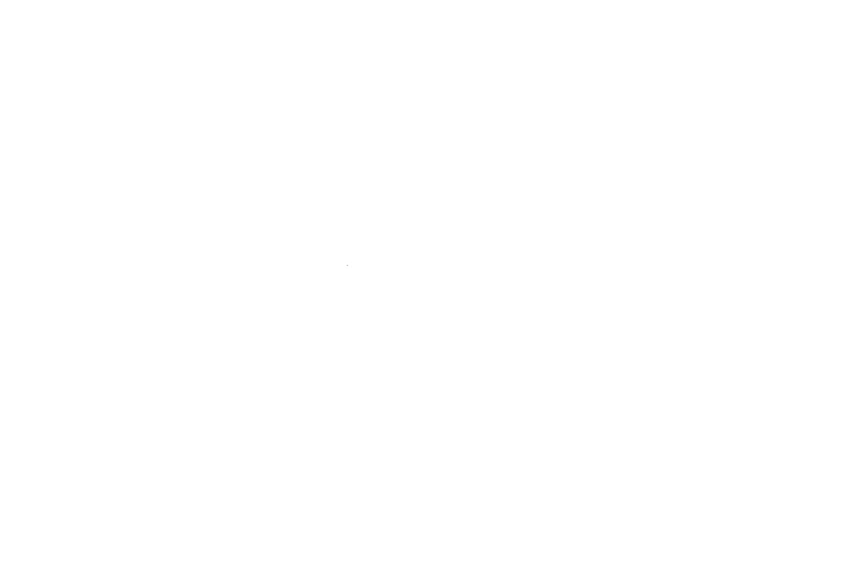 First-Time Filmmakers sessions (W)